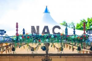 NAC画像1